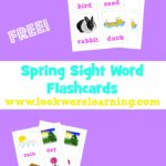 Free Sight Word Flash Cards for Spring