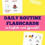 Free Spanish and English Daily Routine Flash Cards