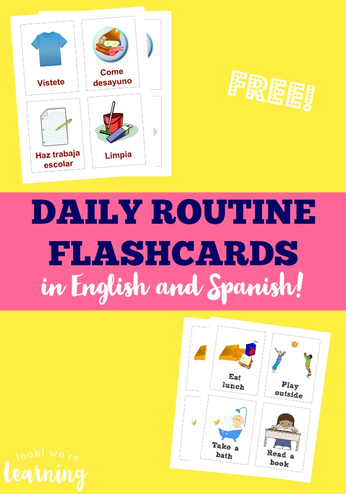 Free Spanish and English Daily Routine Flash Cards ...