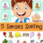 Five Senses Sorting Mat
