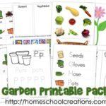 FREE Preschool Gardening Pack