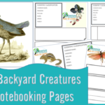 Free Notebooking Pages for the Backyard