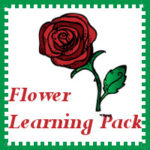 Flower Learning Pack Freebie