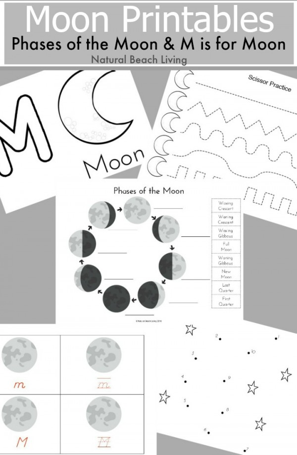 photo about Printable Moon Phases referred to as Moon Levels Printables - Thrifty Homeschoolers
