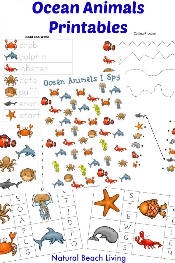 Studying the ocean and its animals? Grab these super fun preschool printables! :: www.thriftyhomeschoolers.com