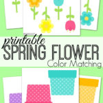 Spring Flower Color Matching Freebie