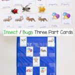 Free Three-Part Cards for Insects & Bugs