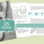 Drawing the Face – FREE eBook Tutorial
