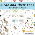 Free Birds & their Food Printable Pack