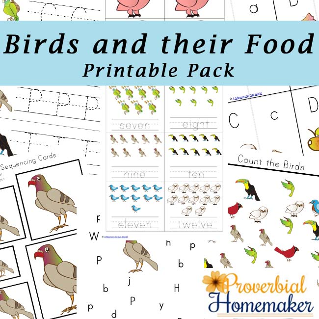 Kids will love learning what birds eat while working on their literacy and math skills with this FREE Birds & their Food Printable Pack. :: www.thriftyhomeschoolers.com