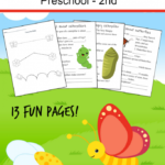 Butterfly Lesson Pack Freebie