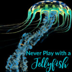 Middle School Writing Prompt: Never Play with a Jellyfish