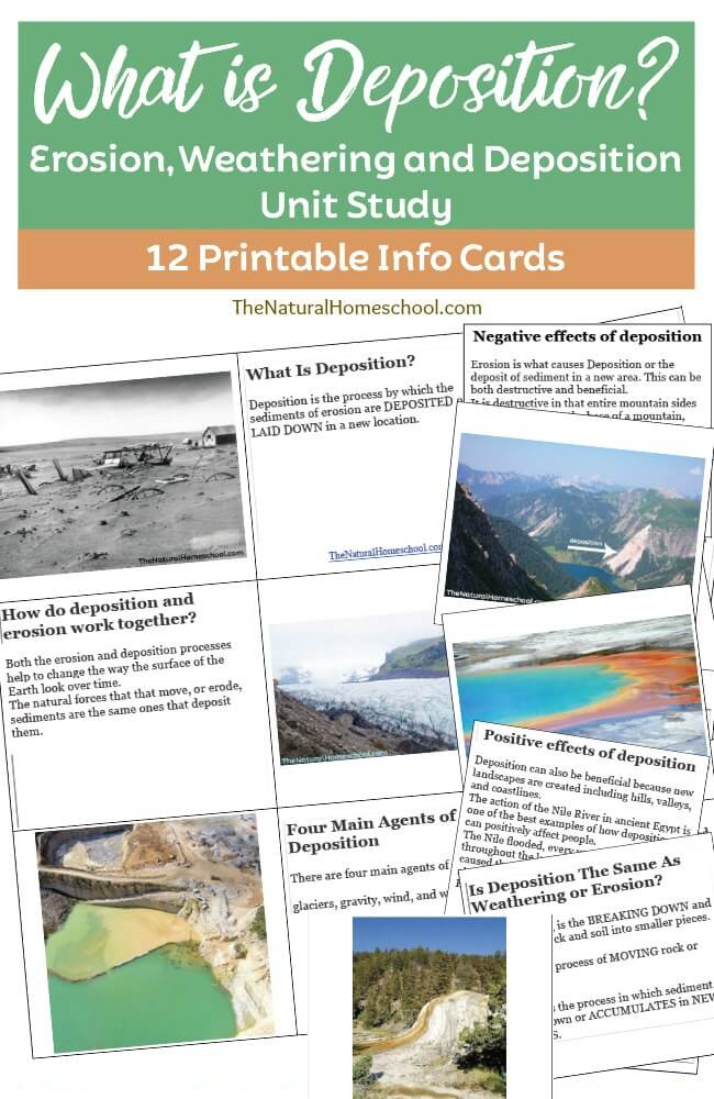 If you're studying Earth Science, this set of 12-printable Info Cards are the perfect addition to studying erosion, weathering and deposition. :: www.thriftyhomeschoolers.com