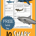 Shark Notebooking Pages {freebie}