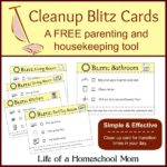 Printable House Cleaning Cards