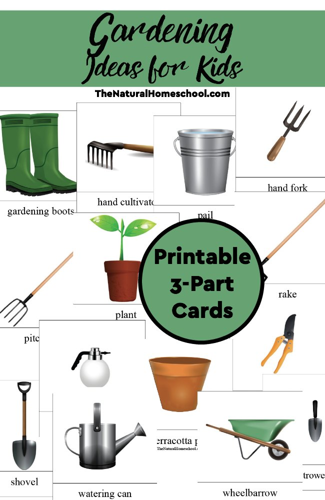 Help kids learn all about gardening tools and more with these printable 3-part cards! :: www.thriftyhomeschoolers.com