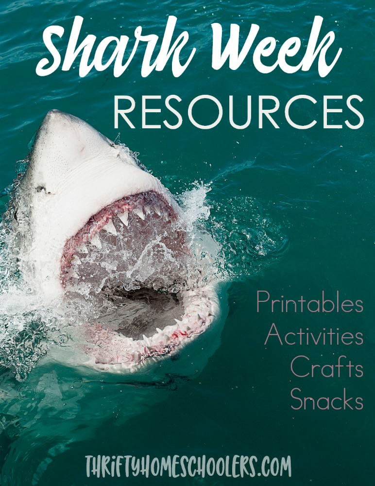 Make the most of Shark Week with these fun resources! From printables to activities & crafts to fun snack ideas - Shark Week is sure to be a hit! :: www.thriftyhomeschoolers.com