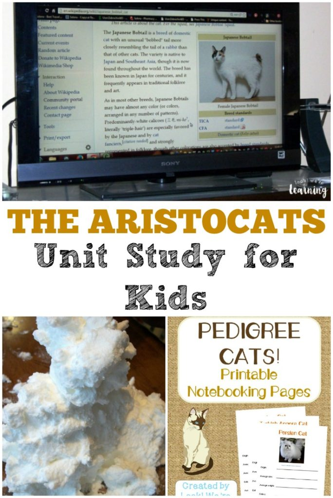 Make movies fun and education with unit studies. Grab this free Aristocats Unit Study to learn more about Paris, Pedigree Cats and more! :: www.thriftyhomeschoolers.com