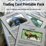 Free Zoo Animal Trading Card Printables