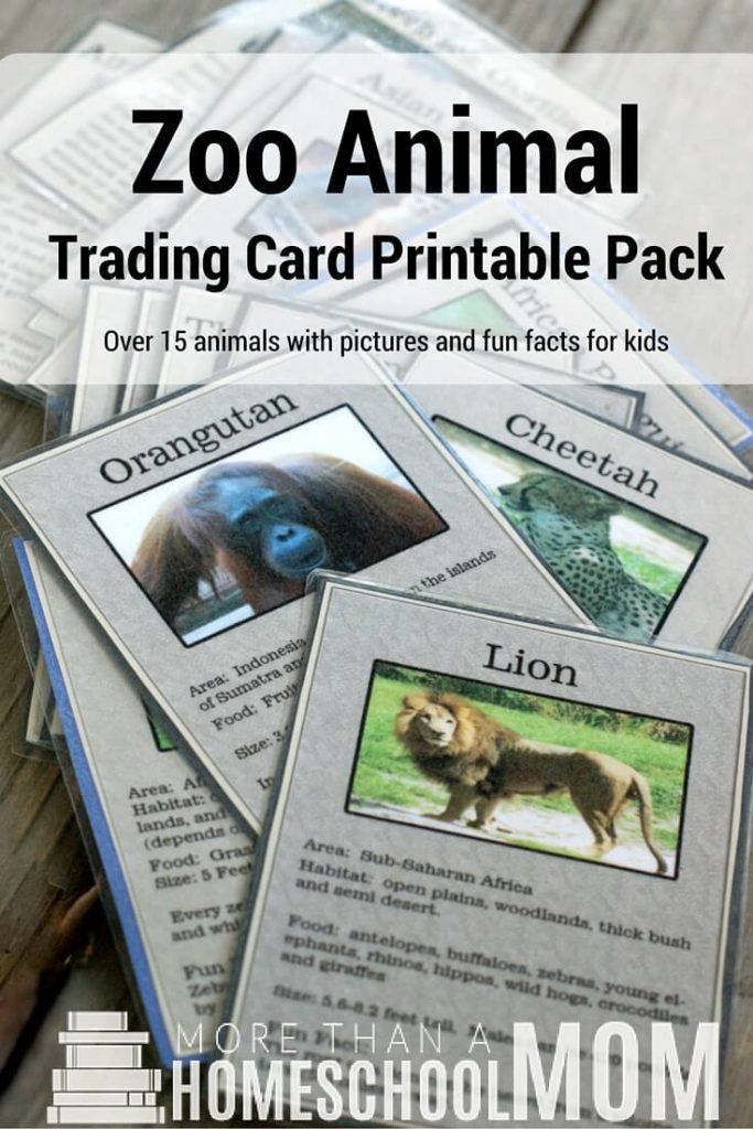 Make your next trip to the Zoo a fun and interactive adventure with these Zoo Animal Trading Cards! :: www.thriftyhomeschoolers.com
