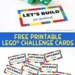 LEGO Duplo STEM Challenge Cards