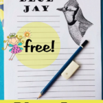 Free Blue Jay Notebooking Pages