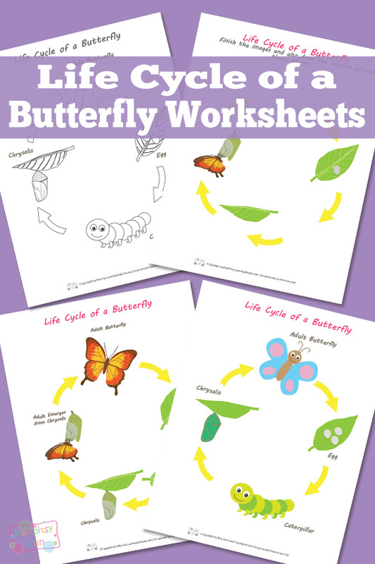 Do your children love butterflies? They can learn all about the butterfly life cycle with these printable worksheets. :: www.thriftyhomeschoolers.com