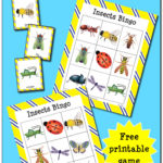 Printable Insect BINGO Cards