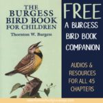Burgess Bird Book for Children Companion FREEBIE