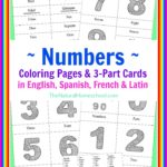 Number 3-Part Cards in 4 Languages