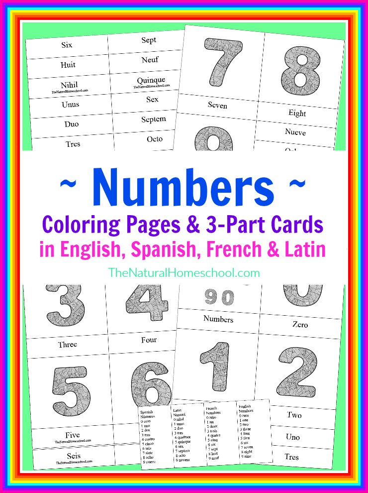 Kids can learn numbers 0-9 in English, Spanish, French and Latin with these 3-part cards.:: www.thriftyhomeschoolers.com