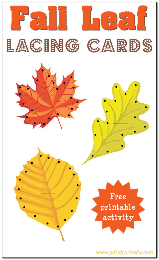 Lacing cards are a great fine motor activity and with Fall quickly approaching, these Leaf Lacing Cards are perfect! :: www.thriftyhomeschoolers.com