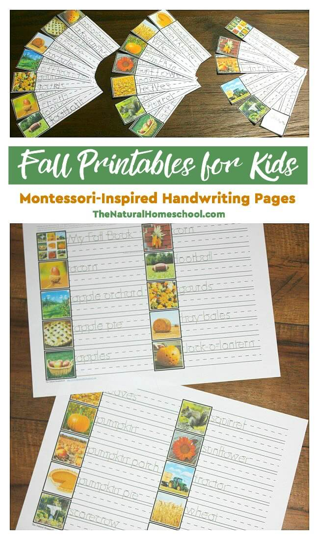 Bring fall inside with these printable Montessori-inspired Fall Handwriting pages. :: www.thriftyhomeschoolers.com