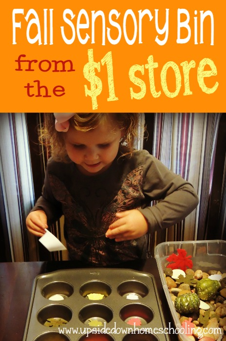 Sensory bins are a great way to introduce new seasons, work on fine motor skills and more! :: www.thriftyhomeschoolers.com