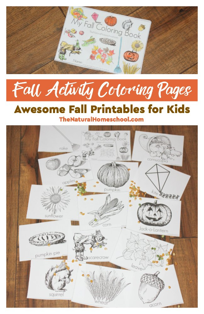 Get kids in the mood for Fall with these themed Activity Coloring Pages! :: www.thriftyhomeschoolers.com