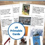 Simple Machines – Pulley Pictures and Information Cards