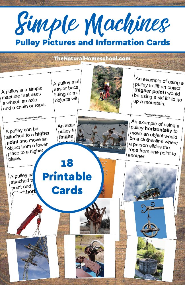 Help little ones learn about Simple Machines, like the pulley, with these 3-part Montessori-style cards. :: www.thriftyhomeschoolers.com