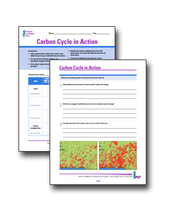 Free Carbon Cycle In Action Worksheets