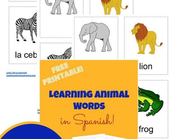 Free Spanish Animal Flashcards