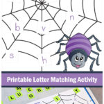Free Printable Spider Web Matching Sheets