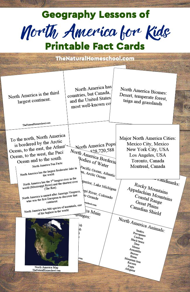 Help kids learn more about North America with these printable Geography Fact Cards. :: www.thriftyhomeschoolers.com
