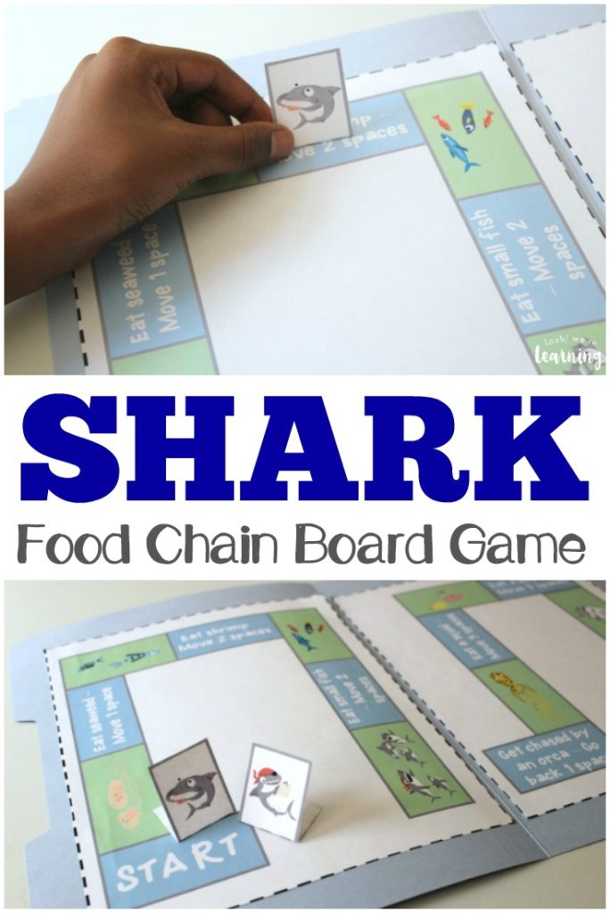 Learn all about Sharks, what they eat and what eats them with this fun Shark Food Chain Game! :: www.thriftyhomeschoolers.com