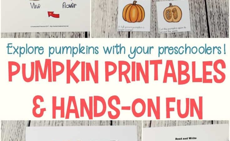 Life Cycle of a Pumpkin Preschool Printables