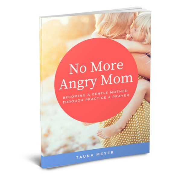 "Want to get a handle on your anger? ""No More Angry Mom"" will give you practical encouragement and tips from God's Word to help you overcome anger. Get it FREE thru 11/6! :: www.thriftyhomeschoolers.com"
