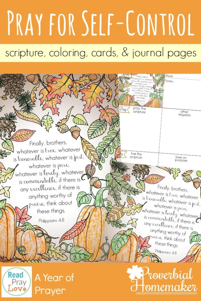 This month, Proverbial Homemaker's prayer focus is Self-Control. She has some beautiful printables including Scripture cards, coloring pages and journal pages. :: www.thriftyhomeschoolers.com