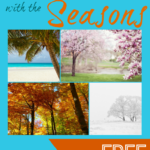 Homeschool through the Seasons + Free Pumpkin Math Preschool Pack