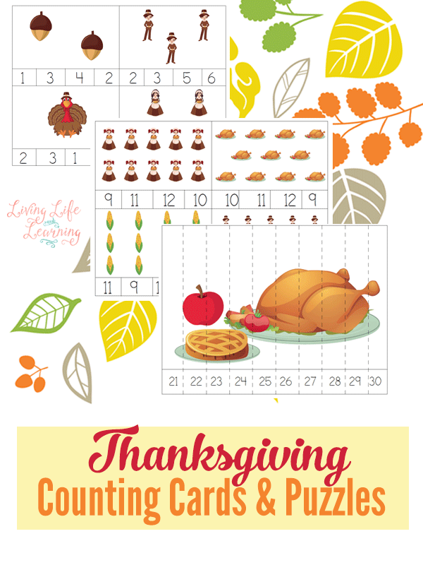These printable Thanksgiving themed counting cards & puzzles are the perfect addition to any unit or just for review! :: www.thriftyhomeschoolers.com