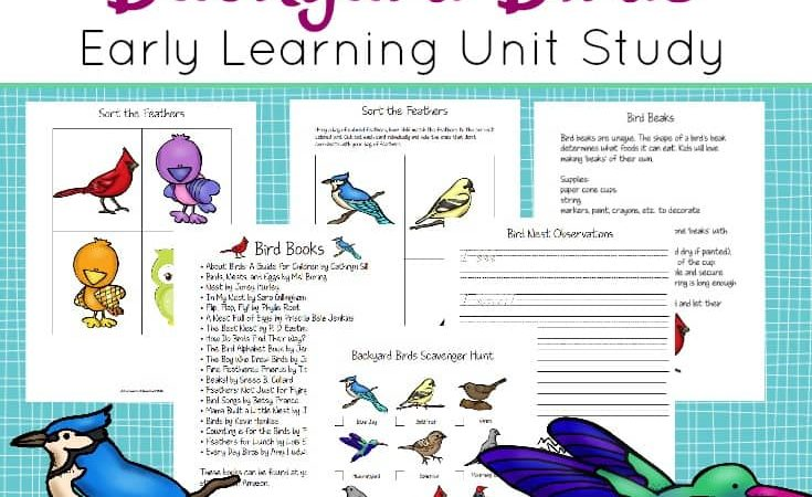 Free Backyard Birds Unit Study