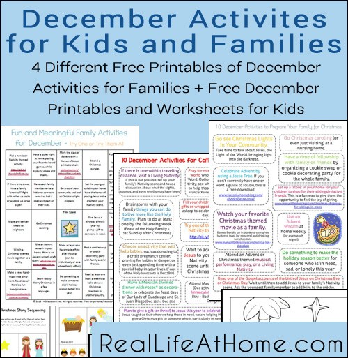 Looking for a way to make sure the month of December doesn't pass you by? This printable December Activities pack for Families & Kids has some fun ideas! :: www.thriftyhomeschoolers.com