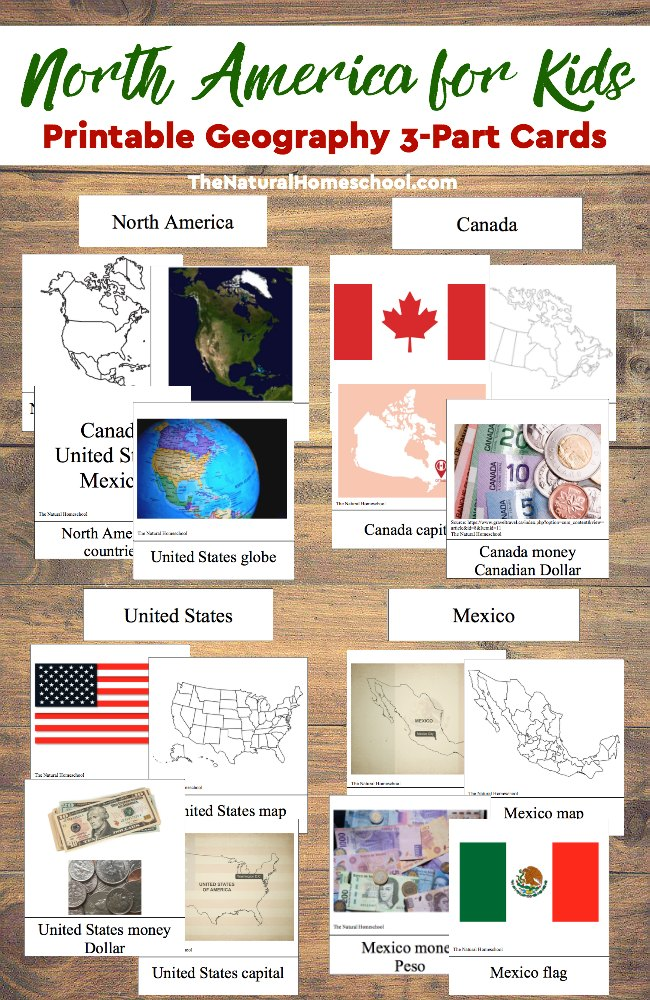 Learning about North America? These printable 3-part Cards are the perfect addition to any unit study! :: www.thriftyhomeschoolers.com